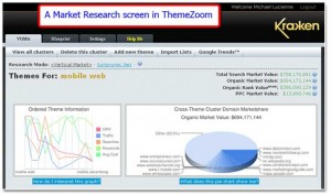 ThemeZoom Market Research